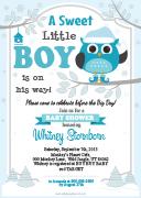 aa40bs-winter-boy-owl-invitation-grey-turquoise-teal.jpg