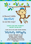 ao62bs-blue-green-boy-monkey-invitation.jpg