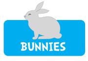 boy-bunny-theme4.jpg