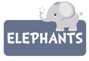 boy-elephant-theme2a.jpg
