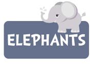boy-elephant-theme2a.jpg