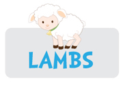 boy-lamb-theme3.jpg