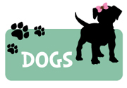 girl-dog-puppy-invitation2.jpg