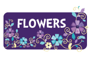 girl-flower-blossom-nature-spring-baby-shower.jpg
