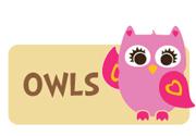 girl-owl-theme2.jpg