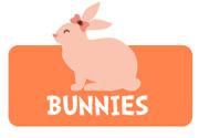 girl-rabbit-bunny-theme3.jpg