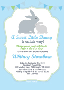 oz81bs-blue-green-grey-bunny-rabbit-invitation.jpg