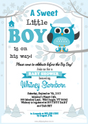 aa40bs-winter-boy-owl-invitation-grey-turquoise-teal.jpg